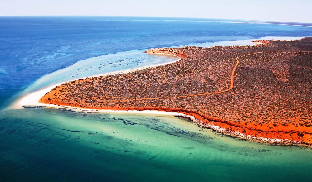 Shark-Bay-Marine-Park-WA-courtesy-Australias-Coral-Coast