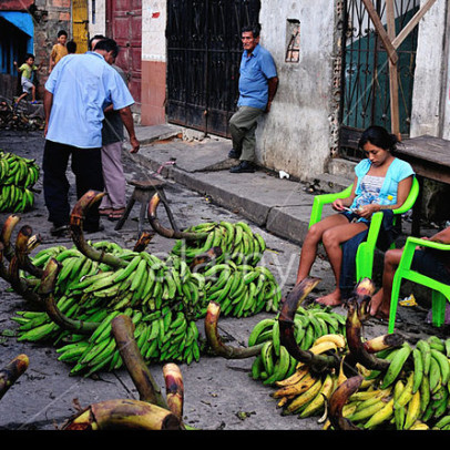 DXF54N Bananas - Market of Belen in IQUITOS . Department of Loreto .PERU