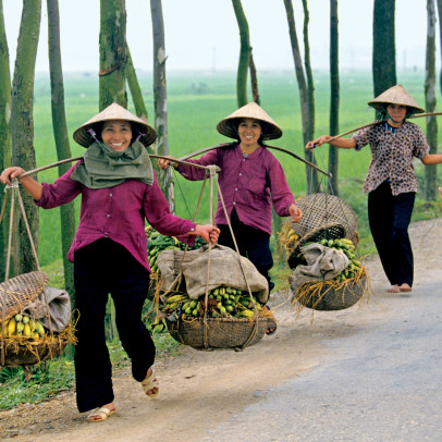 AR3DB9 A trio of women carry bananas along a road in Northern Vietnam outside Hanoi