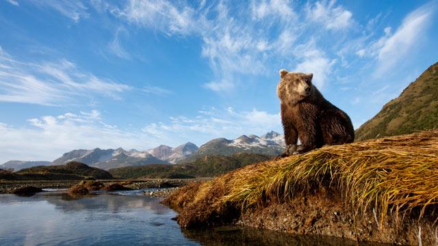 Viaggio Alaska