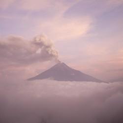Viaggio meraviglioso in ECUADOR e AMAZZONIA