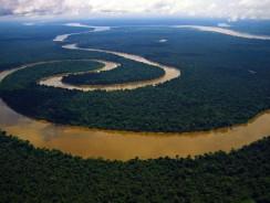 Rio delle Amazzoni, il Re del Sud America
