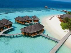 MALDIVE. Benvenuti nel meraviglioso ATOLLO DI ARI