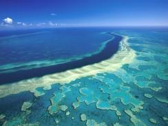 La grande barriera corallina nelle sette meraviglie del mondo