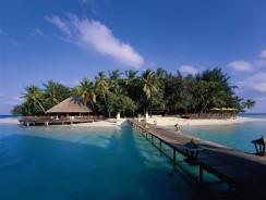 Un Tuffo nei Mari Caldi: Maldive, ecco il Maayafushi Seaclub