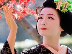Momijigari, il rito del foliage giapponese