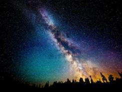 Com'è il Cielo nella Giungla? Questo Video ce lo Racconta