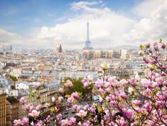 Parigi: Perché la primavera è il periodo migliore per visitare la capitale della Francia