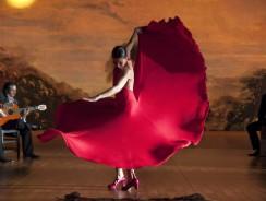 """Musica dal Mondo. Il Flamenco, ovvero Al-Andalus """"felag mangu"""" (contadino sfuggente)"""