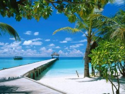 Luoghi da visitare in U.S.A. Key West, Florida