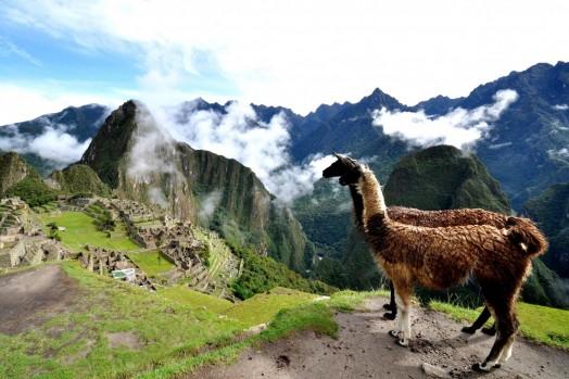 AREQUIPA, CUSCO, perù, sudamerica, TITCACA