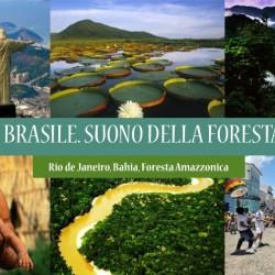 Viaggio in BRASILE, il suono della Foresta – 2016