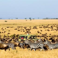 Invito alla Tanzania
