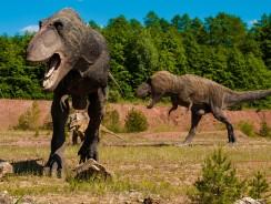 Scoperto in Abruzzo Il Più Grande Dinosauro Italiano